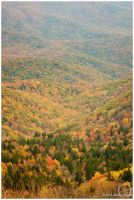 Cowee Mountains Overlook by eagle79