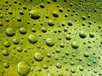 Green Raindrops 12981691 by StockProject1