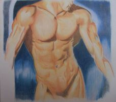 Male Torso by gemini-art