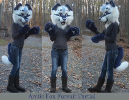 Arctic fox Fursuit Partial by GoldenCat22
