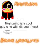 NightWing OC SHEET DO NOT STEEL MINION OC by xXSakura-xX-Shadow