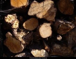 Wood Texture 02 by AnitaJoy-Stock