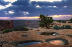 The 3 Water Holes by mjohanson