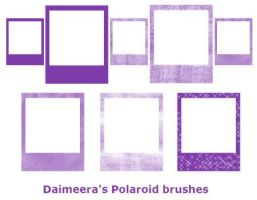 Polaroid brushes by Daimeera