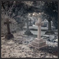 Grave Yard by Mohain