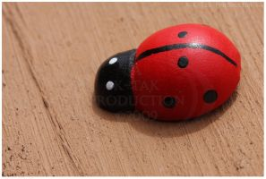 Lady Bug by K-Tak