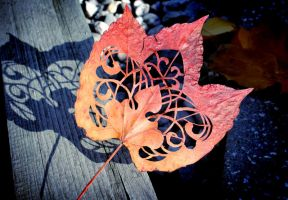 Leaf2013 by anniecarter