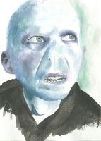 Lord Voldemort by Djelibey