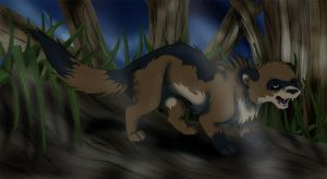 Ferret in a forest by Skottan