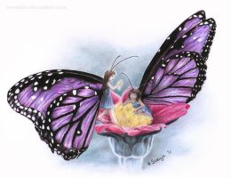 Butterfly Fairies by SvenjaLiv