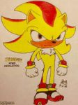 Super Shadow by PilloTheStarplestian