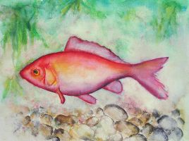 Red fish by JenniElfi