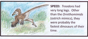TROODON Project - Speed by WhiskerfaceRumpel