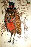 Seasonal owl by Busbi