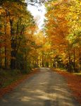 Autumn Road in Willimantic by BlueSolitaire