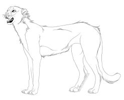 -Free Use- Cheetah Lineart by Kalenka
