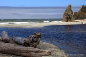 Ruby Beach 7 by metacom