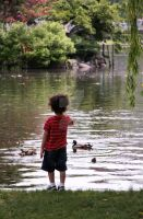 Child with Birds by caribbeanpirate