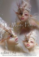 The Mystic forest A by cdlitestudio
