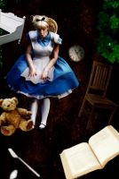 Alice in Wonderland - The Fall by kayleighloire