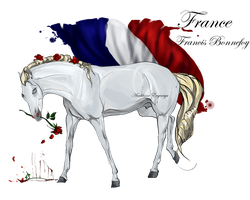 Horse Hetalia: France by Moon-illusion