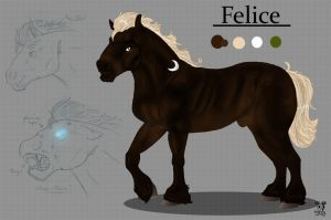 Felice by DodgerMD