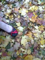 And my foot by chrysanthemus