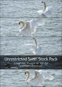 Expressive Swan Stock Pack by StockSaphitri