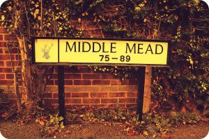 Middle mead by Suckstobeyourgirl
