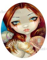 Seashell Beauty by jasminetoad