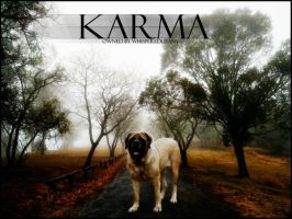 Karma by PerfectxEnemy