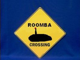 Roomba Crossing by Comisar