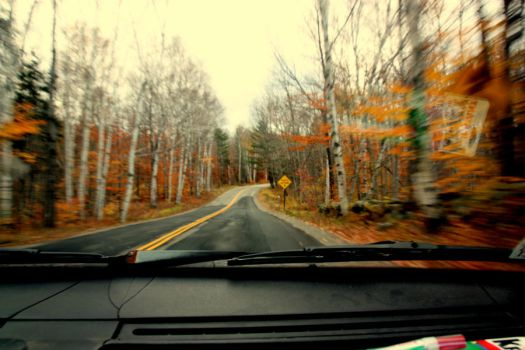 Life through your Windshield by epesposito