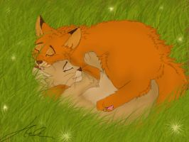 Fireheart and Sandstorm xD by Blaukralle