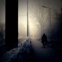 into the light by yv