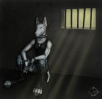 Night shorter day by BullTerrierKa