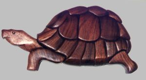 tortoise by cl2007