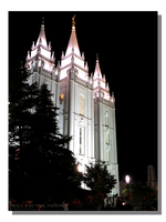 Salt Lake Temple Night Lights by WillFactorMedia