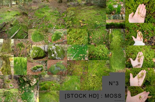 [stock] hd moss pack 03 by Itsmil