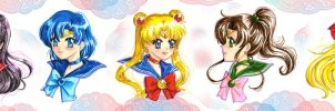 Sailor Moon busts by andys