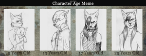 Character Age Meme by CoyoteoftheSands