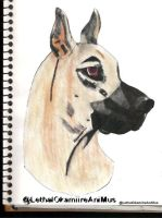 Great Dane by LethalOkamiireAniMus