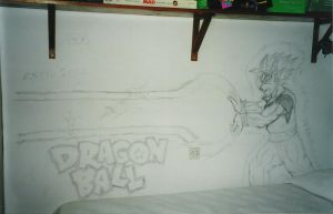 Wall drawing - Dragon Ball by Protossgp32