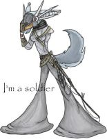 im a soldier by nikoo