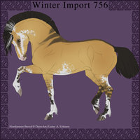 Nordanner Winter Import 756 by DemiWolfe
