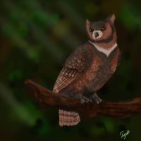 LotN contest- Bloodmarrow Owl by CreatTheCrow