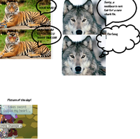 If Animal Jam was More Realistic #17 Idiots by Animalshine