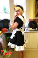 Maid Finland by Fadedhowl