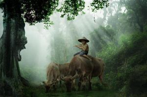 shepherds in the forest by cc-line