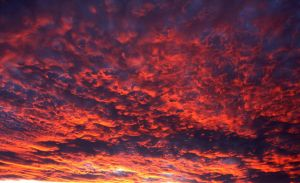 Fire In The Sky by Revlis777